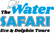 Safari Dolphin Tours OBX